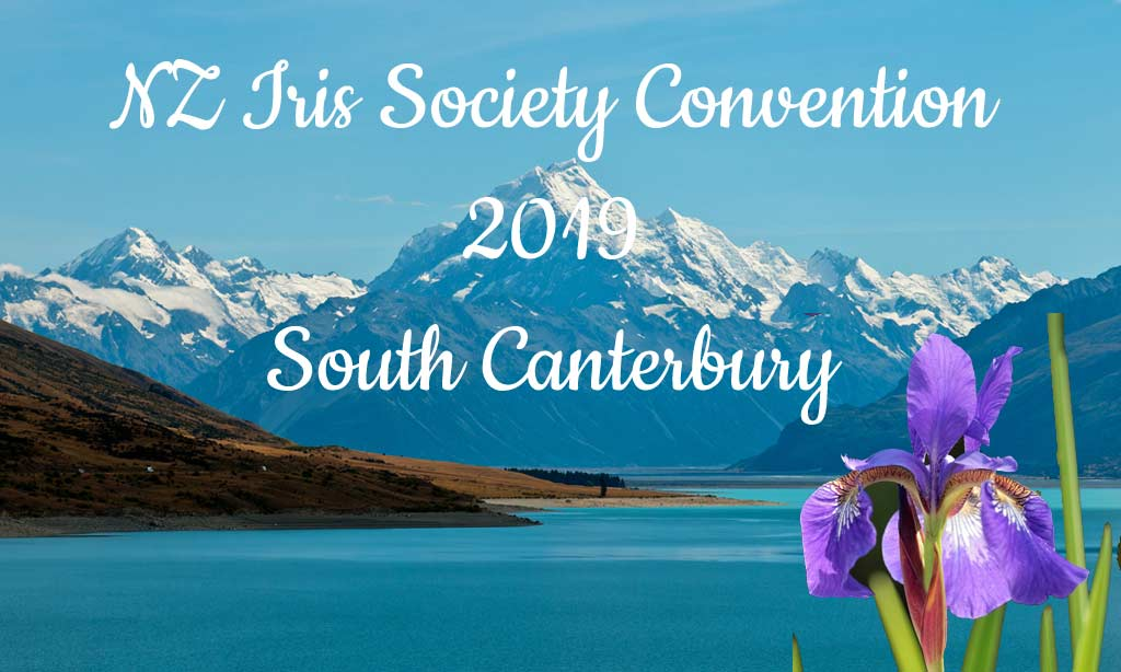 South Canterbury Convention 2019
