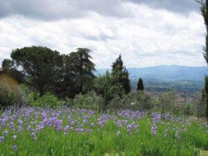 Photo taken at a farm in Reggello, on the outskirts of Florence,