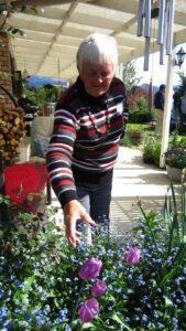 Geraldine's garden
